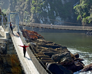 Suspension bridge at the Tsitsikamma Mountains